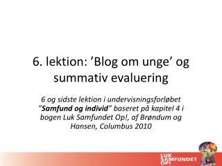 6. lektion: 'Blog om unge' og  summativ  evaluering