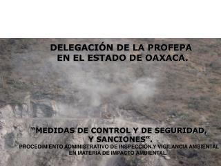 DELEGACIÓN DE LA PROFEPA  EN EL ESTADO DE OAXACA.