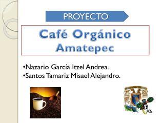 Café Orgánico  Amatepec