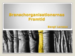 Branschorganisationernas Framtid                                                  Bengt Larsson