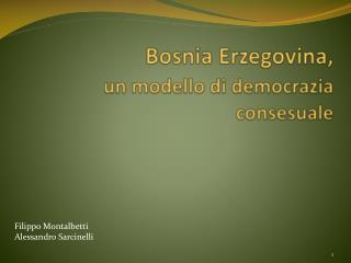 Bosnia Erzegovina, un modello di democrazia  consesuale
