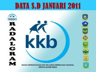 DATA S.D JANUARI 2011