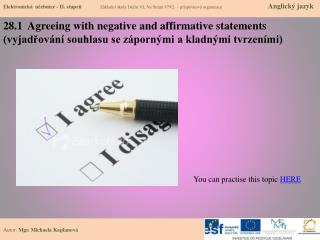 28.1   Agreeing with  negative and  affirmative statements