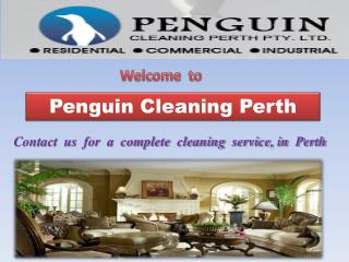 Penguin-Cleaning-Perth-Pty-Ltd