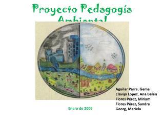 Proyecto Pedagogía Ambiental