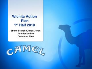 Wichita Action              Plan     1 st  Half  2010