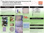 Bone Matrix Production Using Canine Osteosarcoma Cells Embedded in Calcium Alginate Beads   Cyndi H. T. Edwards, Aaron M