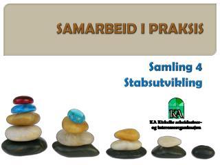 SAMARBEID I PRAKSIS