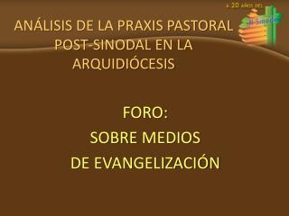 ANÁLISIS  DE LA PRAXIS PASTORAL POST-SINODAL EN LA ARQUIDIÓCESIS