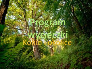 Program wycieczki