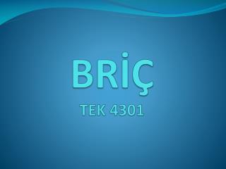 BRİÇ TEK 4301