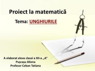 Proiect la matematică