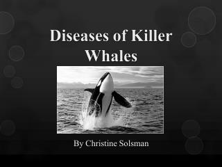 Diseases of Killer Whales