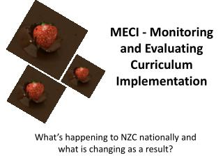 MECI - Monitoring and Evaluating Curriculum Implementation