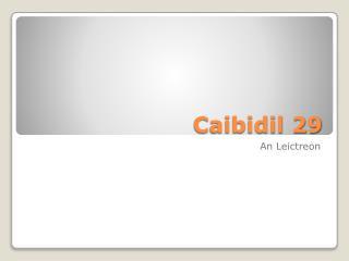 Caibidil 29