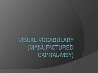 Visual Vocabulary  (Manufactured Capital-MSY)
