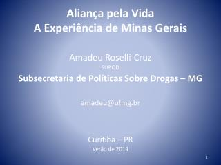 Aliança pela Vida  A Experiência de Minas Gerais