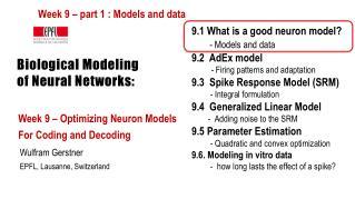 Biological Modeling  of Neural Networks: