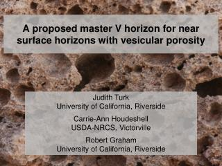 A proposed master V horizon for near surface horizons with vesicular porosity