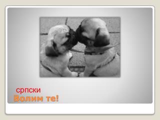 Волим те!