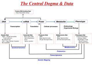 The Central Dogma & Data