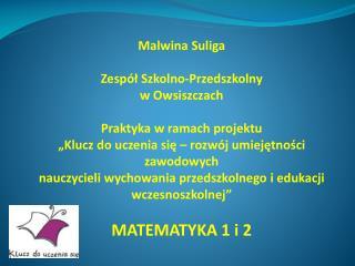 Malwina Suliga Zespół Szkolno-Przedszkolny  w Owsiszczach Praktyka w ramach projektu