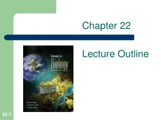 Chapter 22 Lecture Outline
