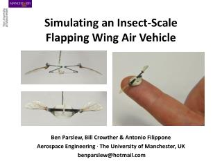 Simulating an Insect-Scale  Flapping Wing Air Vehicle