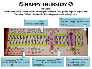 ? HAPPY THURSDAY ?