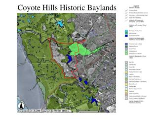 Coyote Hills Historic Baylands