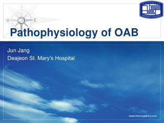 Pathophysiology of OAB