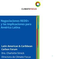 Negociaciones REDD+  y las implicaciones para América Latina