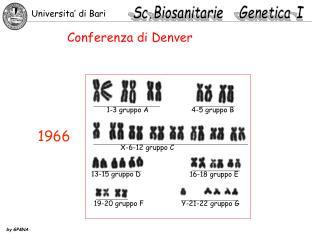 Conferenza di Denver