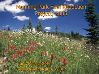 Manning Park Fuel Reduction Project, 2005