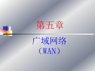 广域网络( WAN )