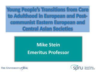 Mike Stein Emeritus Professor