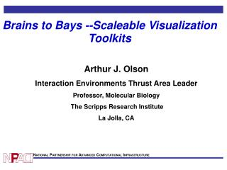 Brains to Bays --Scaleable Visualization Toolkits