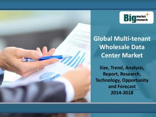 Global Multi-tenant Wholesale Data Center Market 2014 - 2018
