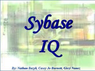Sybase  IQ