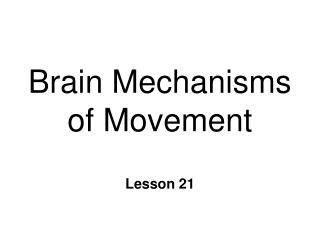 Brain Mechanisms of Movement