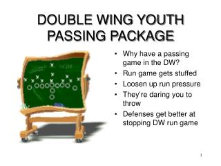 DOUBLE WING YOUTH PASSING PACKAGE