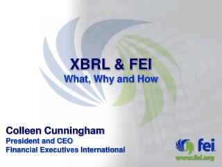 XBRL  FEI What, Why and How