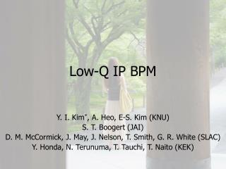 Low-Q IP BPM