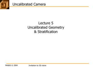 Uncalibrated Camera