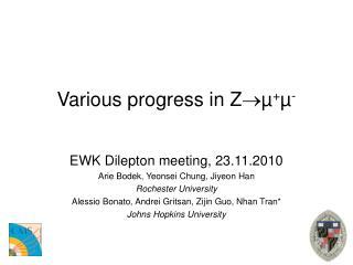 Various progress in Z µ + µ -