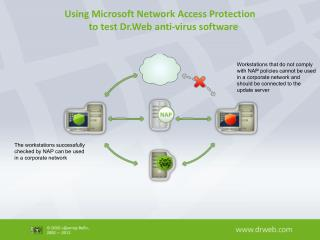 Using Microsoft Network Access Protection     to test Dr.Web anti-virus software