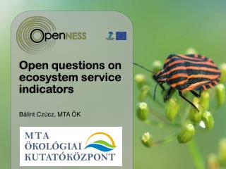 Ope n questions on  ecosystem service  indicator s
