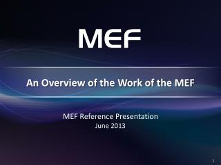 An Overview of the Work of the MEF