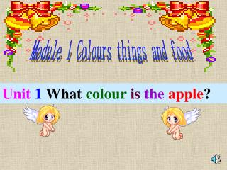 Module 1 Colours things and food