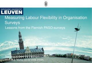 Measuring Labour Flexibility in Organisation Surveys